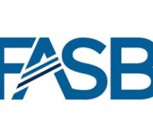 FASB Issues Technical Corrections to Financial Instruments Standard