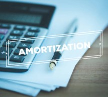 Application of the Tax Amortization
