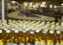 How a Major Beer Importer is Planning for U.S. Tax Reform